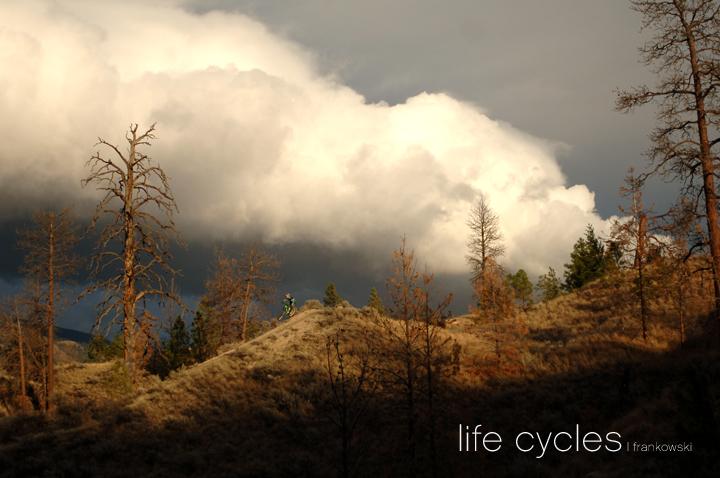 life cycles mtbr 5