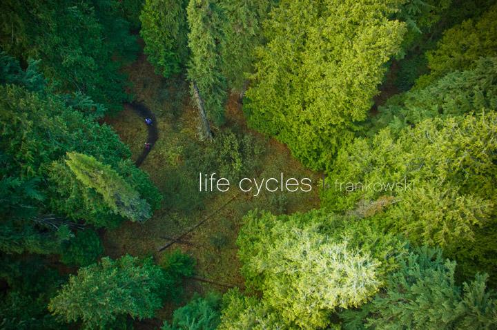 life-cycles-mtbr3a
