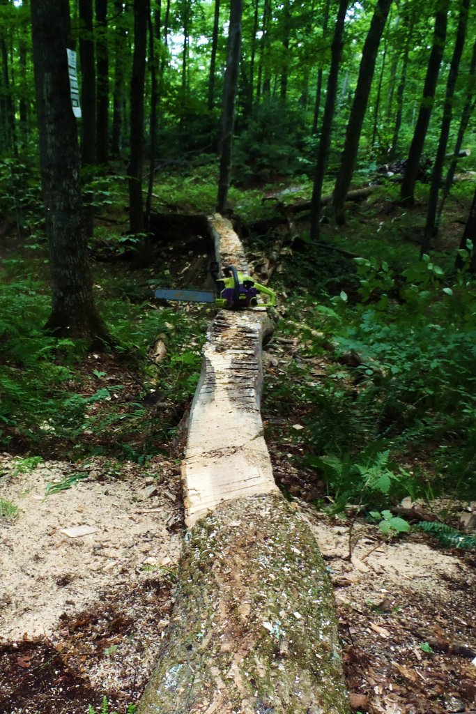 Trail maintenance passion-lightnening-rod.jpg