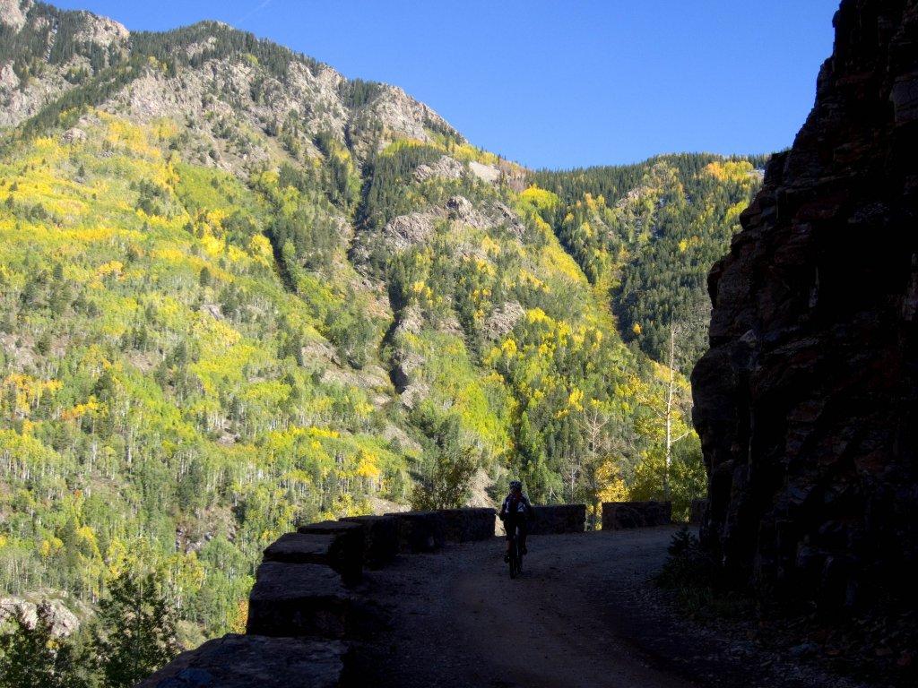 Leaf Peeper madness near Mancos and Durango-lime_creek_img_2913.jpg