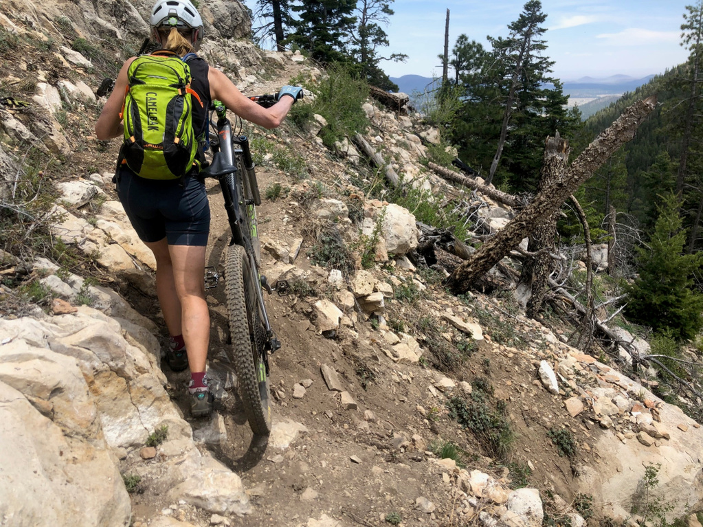 Flagstaff trail conditions.-little-bear_1.jpg