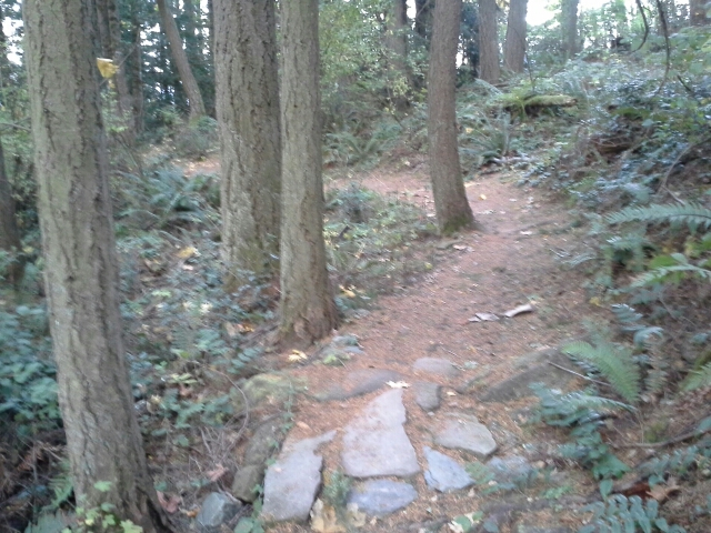 Trail Pics-littleswitchback.jpg