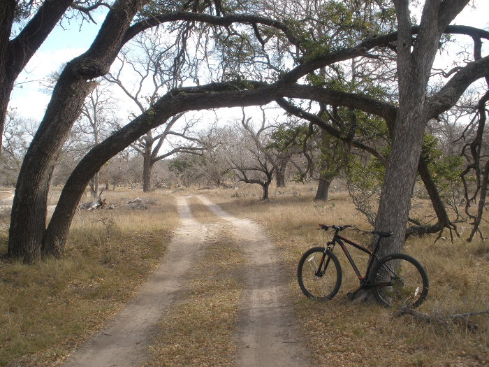 Another South Llano post-llanopark0002.jpg