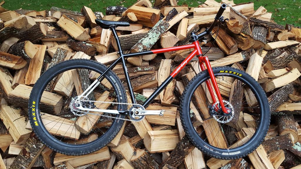 "The ""New"" Post Your Singlespeed!-log-lady.jpg"