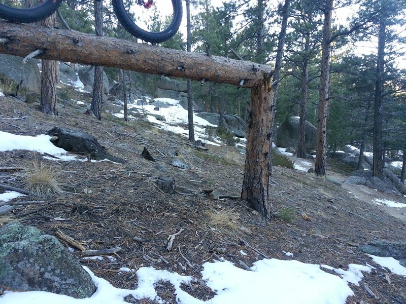 The Mukluk of Wampa Treads at Treeline-log-ride.jpg