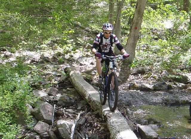 Is riding skinnies passe'?-log_crossing.jpg