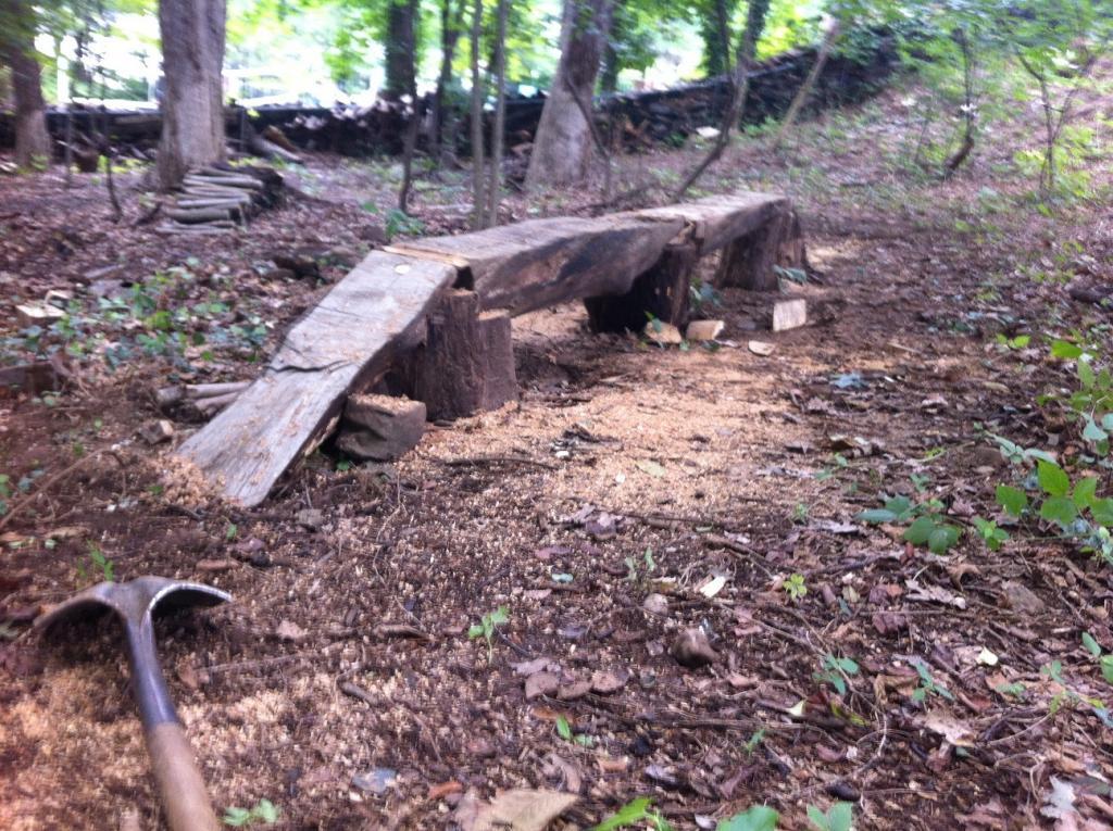 Backyard Trails-logbridge_1.jpg