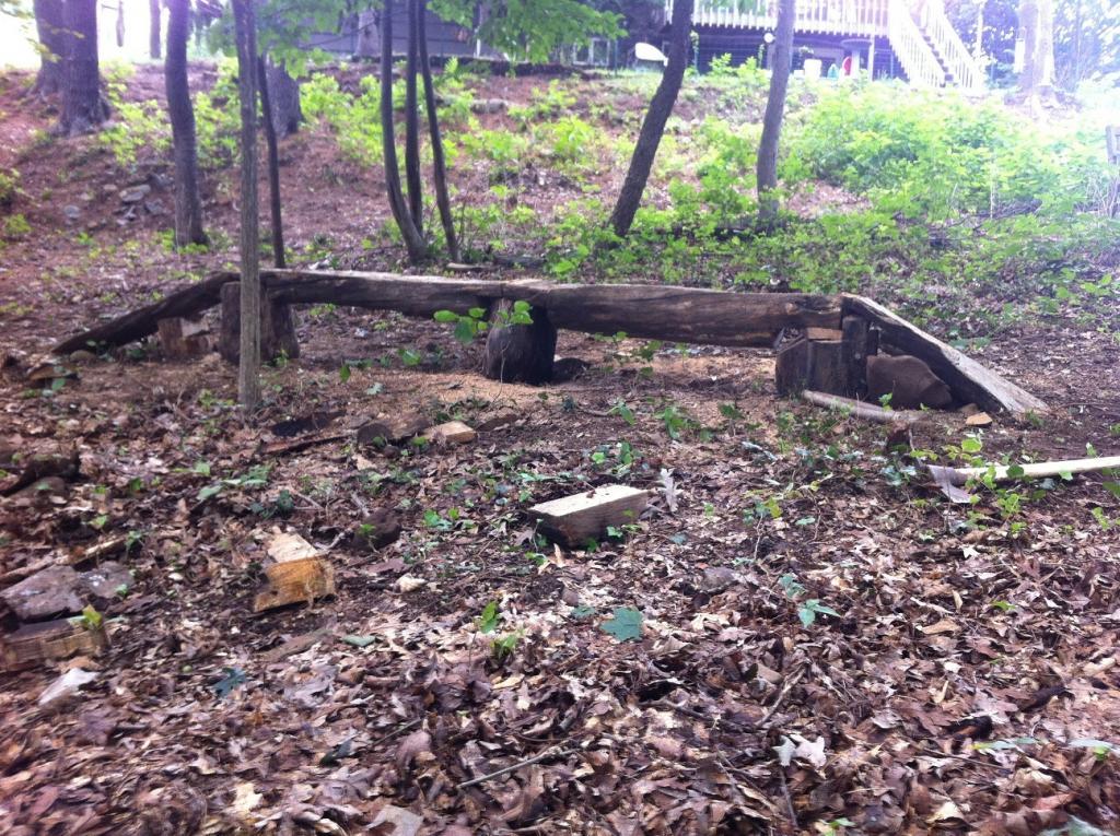 Backyard Trails-logbridge_2.jpg