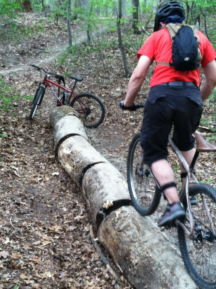 Building stunts with forest lumber only-logzilla.jpg
