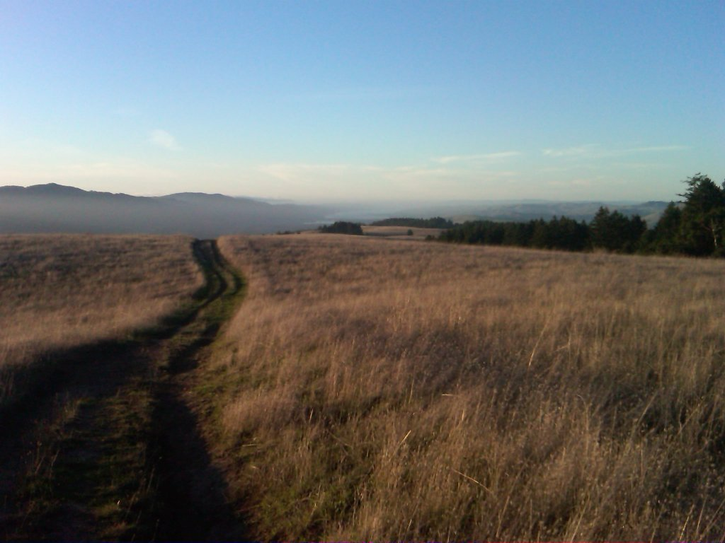 Summer riding in Marin-looking-tomales.jpg