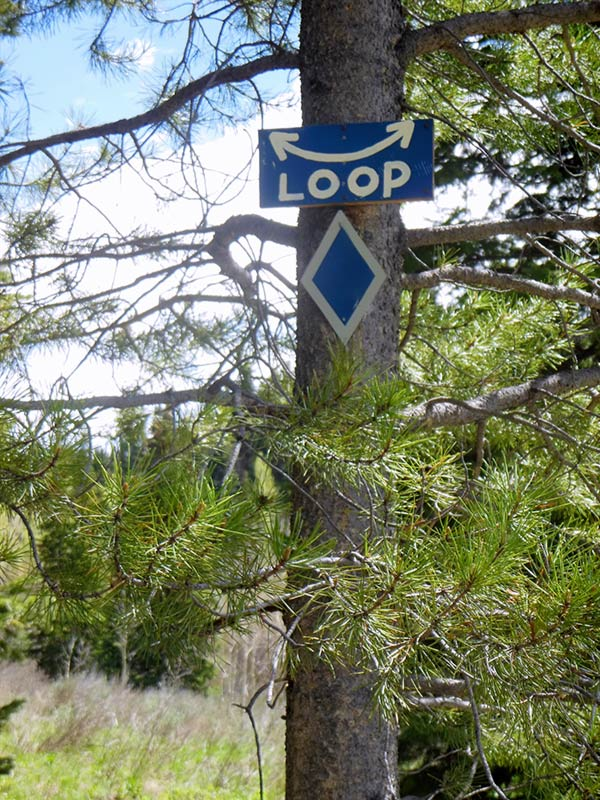 Trail Pics-loop.jpg