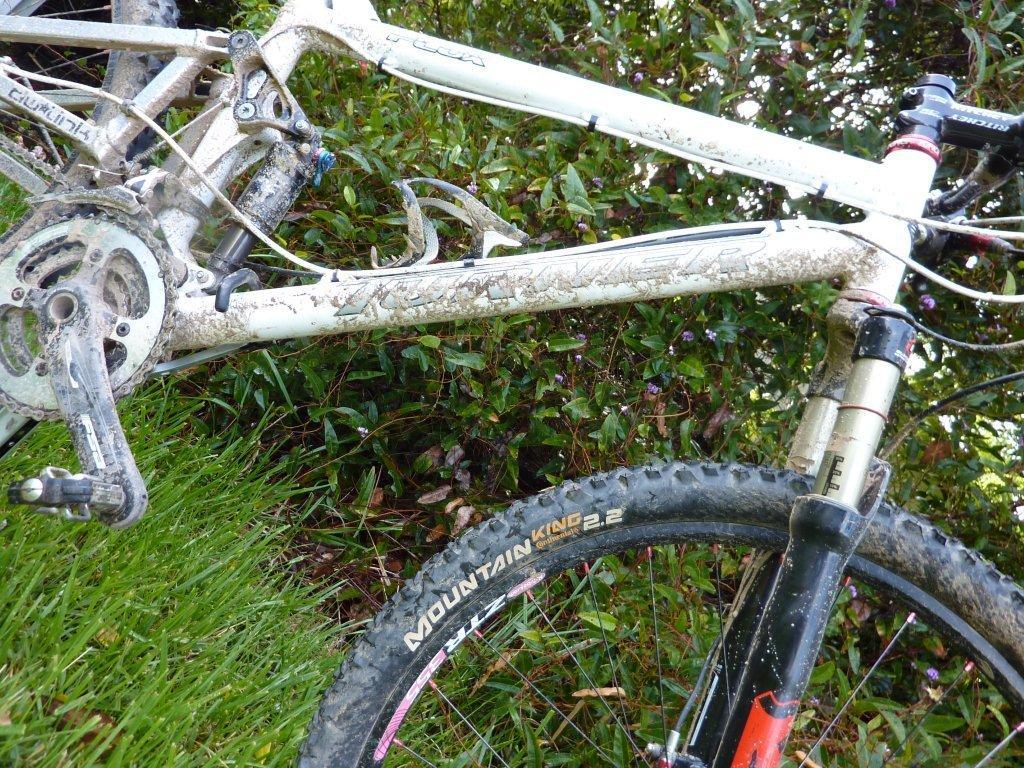 2009 Flux-low-sde-dirty.jpg