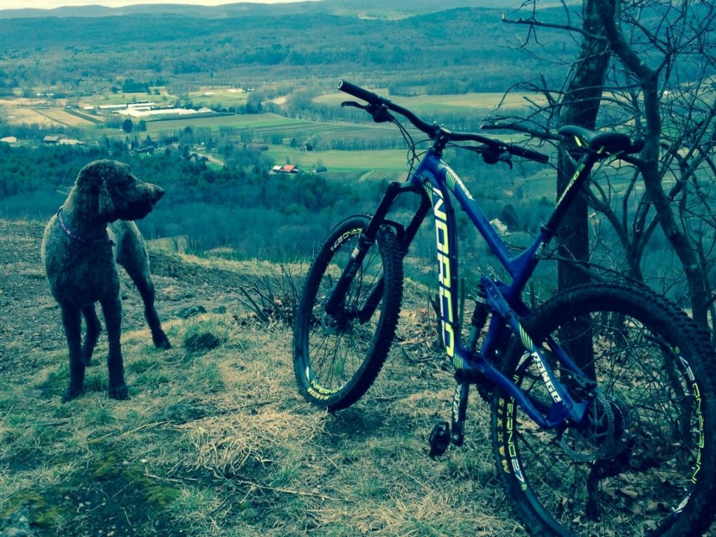 Anyone ride with their dog?-luc-y-awesome-phote.jpg