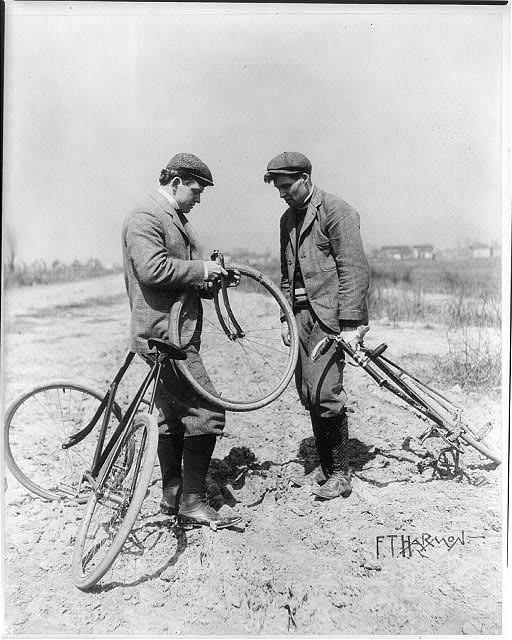 Looking for a Urban Bike-lucielle.jpg
