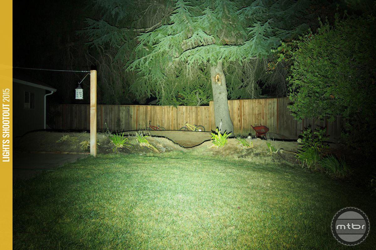 Lupine Betty R 14 Backyard Beam Pattern
