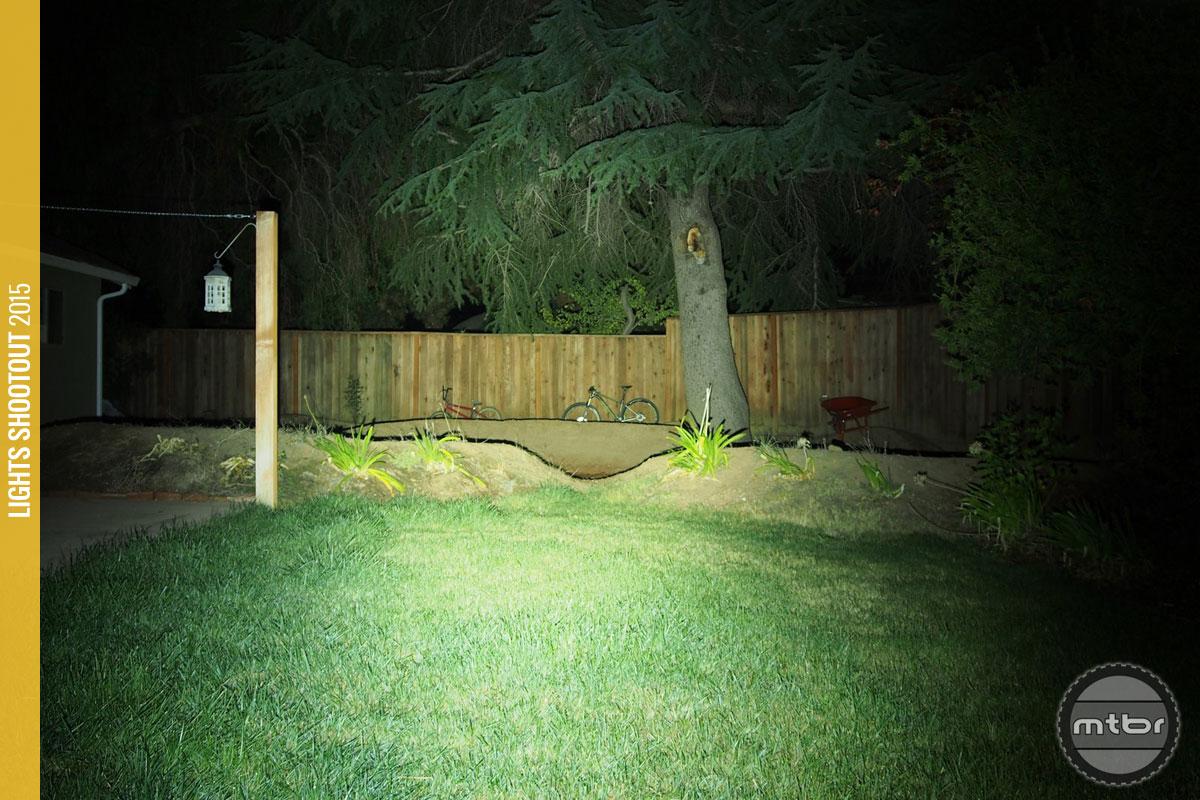 Lupine Wilma 7 Backyard Beam Pattern