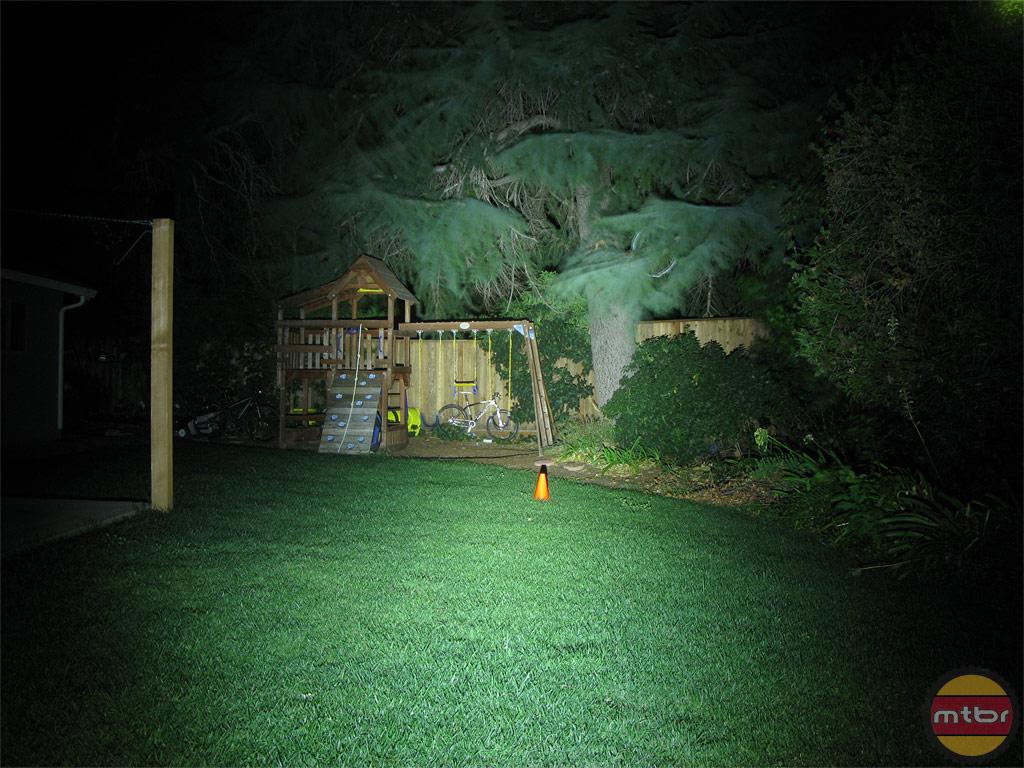 Lupine Wilma TL Backyard Beam Pattern