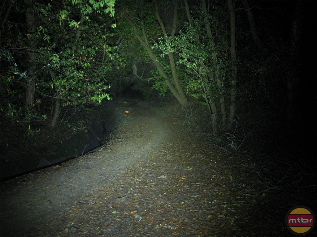 Lupine Wilma TL Trail Beam Pattern