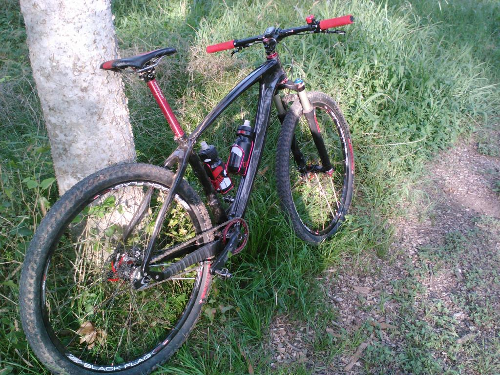 "The ""New"" Post Your Singlespeed!-lurcher-4.jpg"