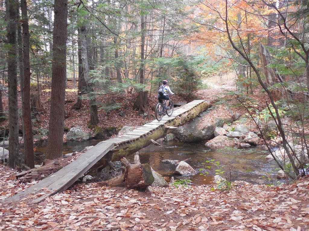 A little North Conway stoke-m-bridge-death-10-23-13-medium-.jpg