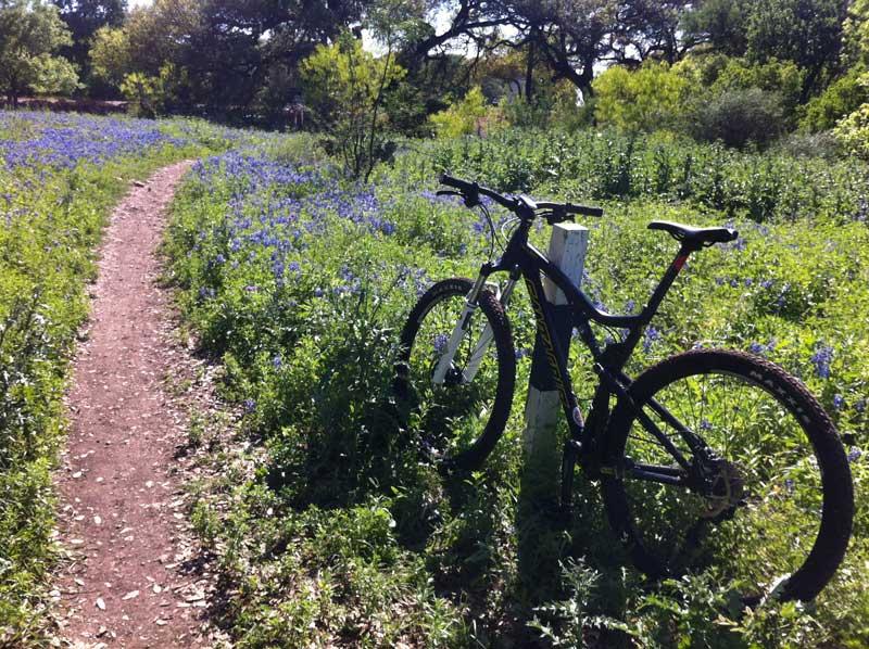 Trail conditions thread San Antonio-macpark-bonnets.jpg