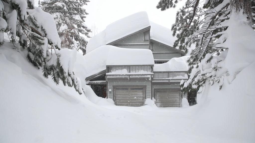 Snow day-mammoth-2.jpg