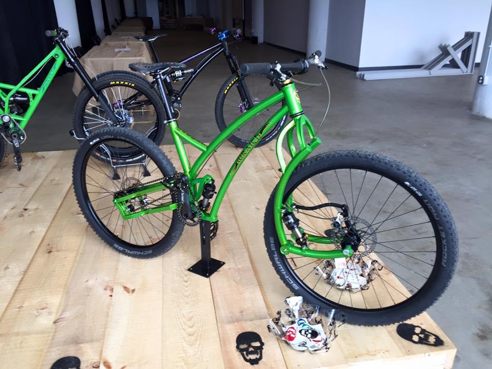 Adding idler pulley to reduce anti squat and pedal kickback?-mantis.jpg