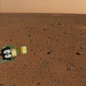 Name:  mars-photo-meme-4.jpg Views: 405 Size:  18.3 KB