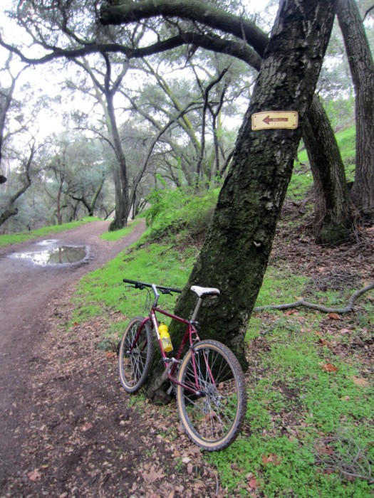 Bike + trail marker pics-marshall-2.jpg
