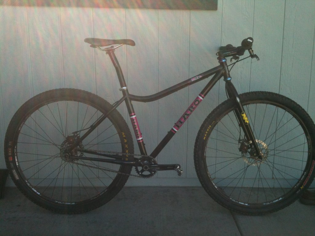 Lets see some steel 29ers!-maryss_2.jpg