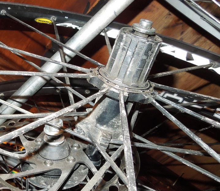 Susan DeMattei's Olympic Bike (with final photos)-mavic-crossmax_2.jpg