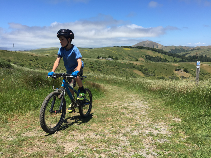 "Kid's Road Bike and Mountain Bike for sale - (20"" wheels)-maxel-trek_sm.jpg"
