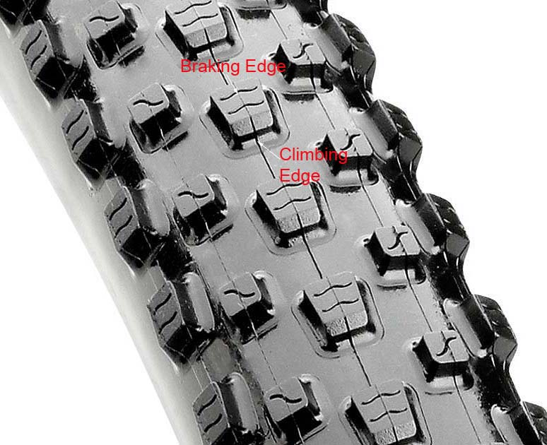 Maxxis Beaver 29er Tire Tread Pattern