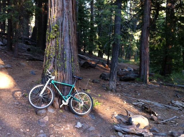 K2/Proflex bike forum?-may-555-trail-1.jpg