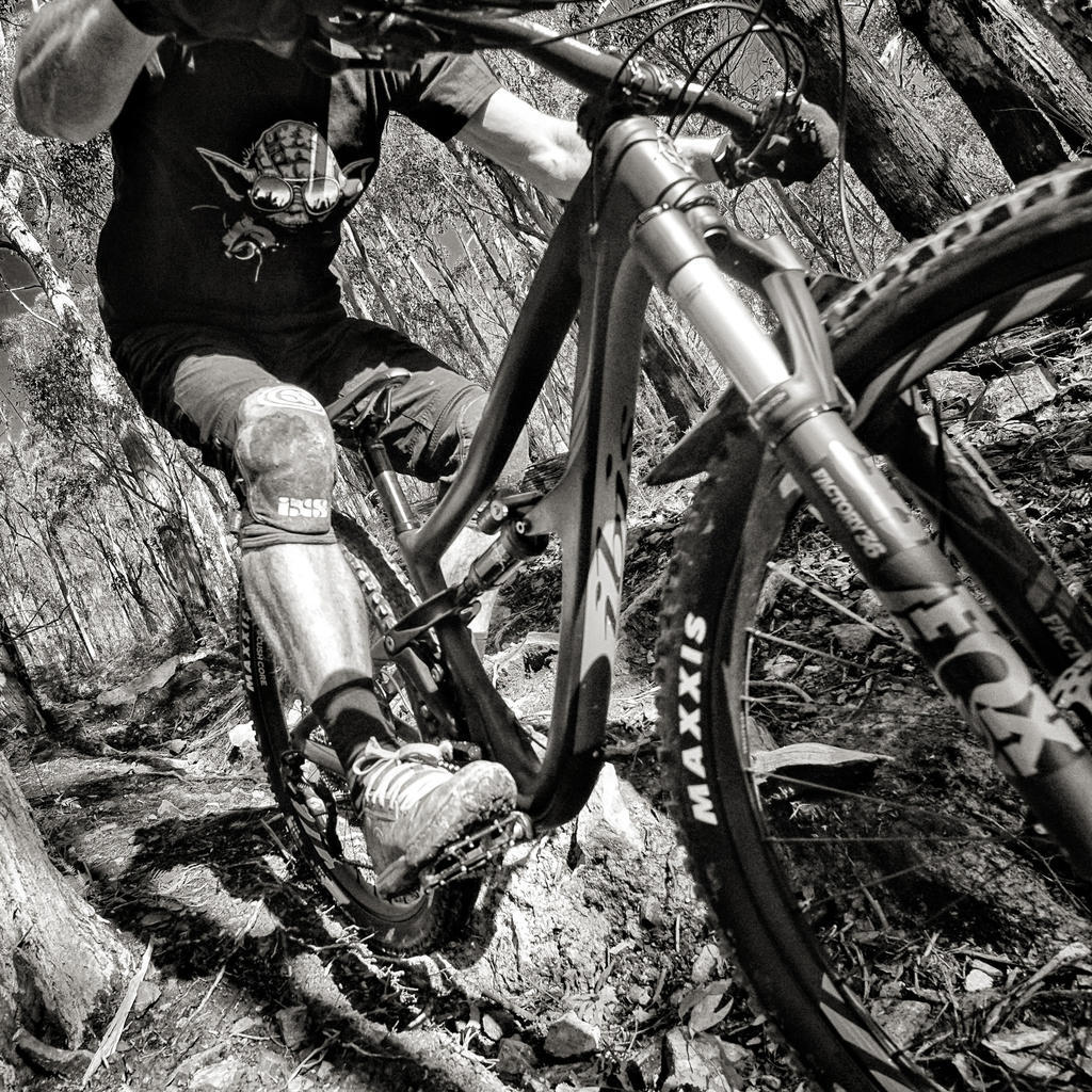 One picture, one line.  No whining. Something about YOUR last ride. [o]-mayfourth.jpg