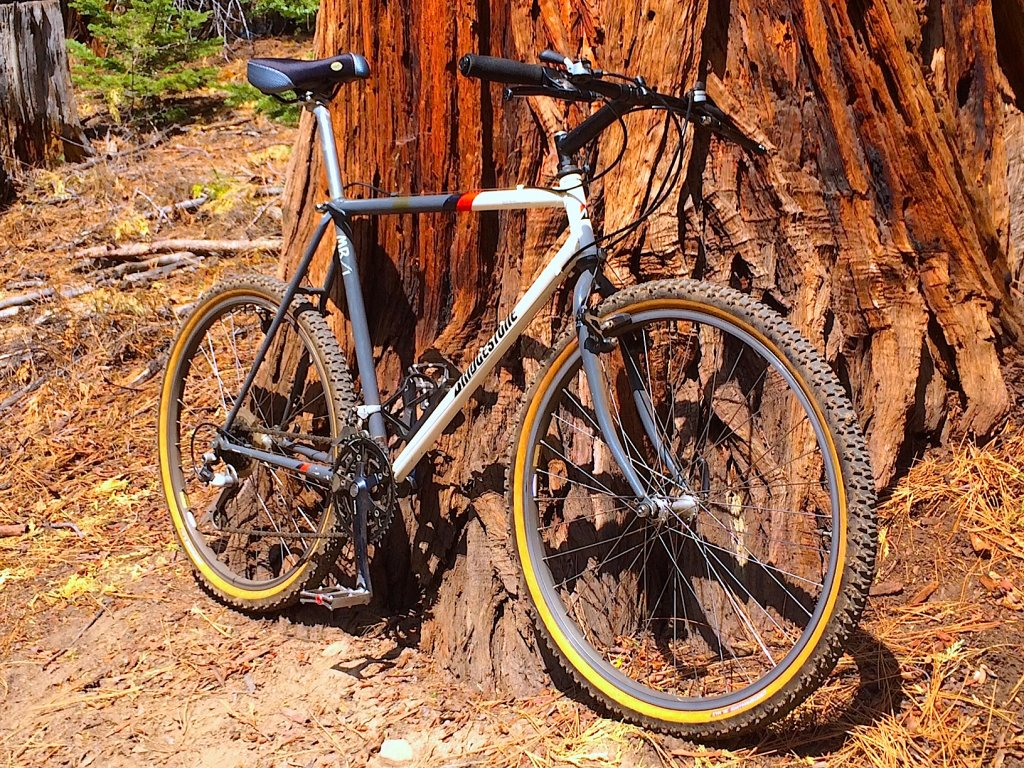 Question About Vintage MTBs-mb1-front.jpg