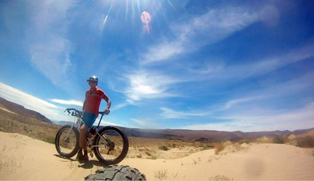 Puffin in the desert sand [O]-mb1.jpg