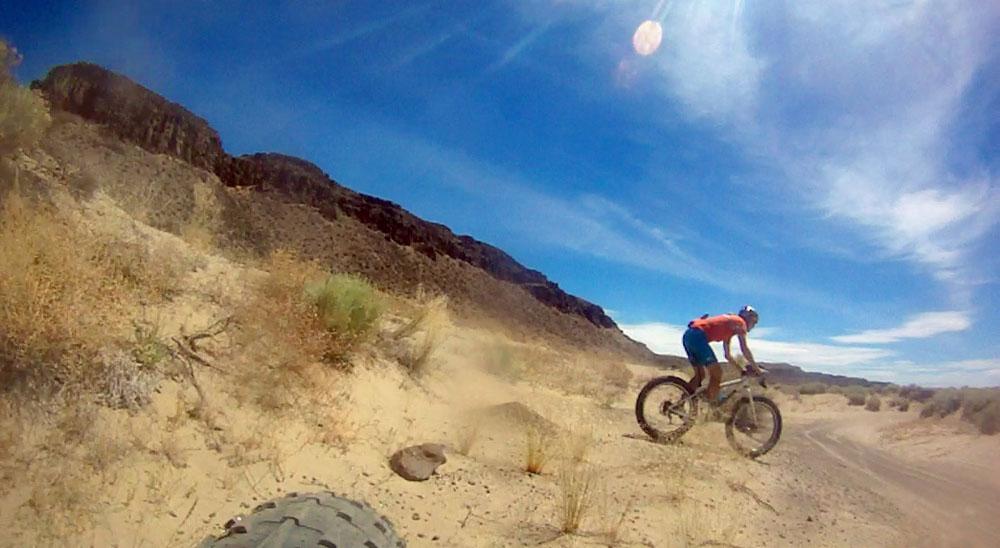 Puffin in the desert sand [O]-mb6.jpg