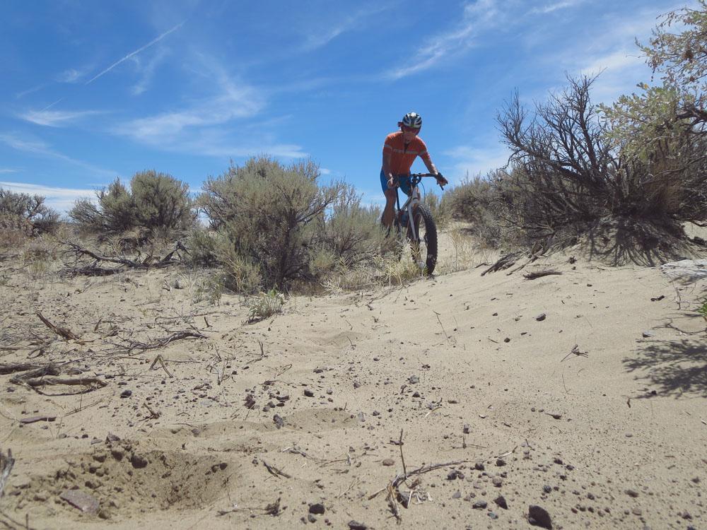 Puffin in the desert sand [O]-mbsand1.jpg
