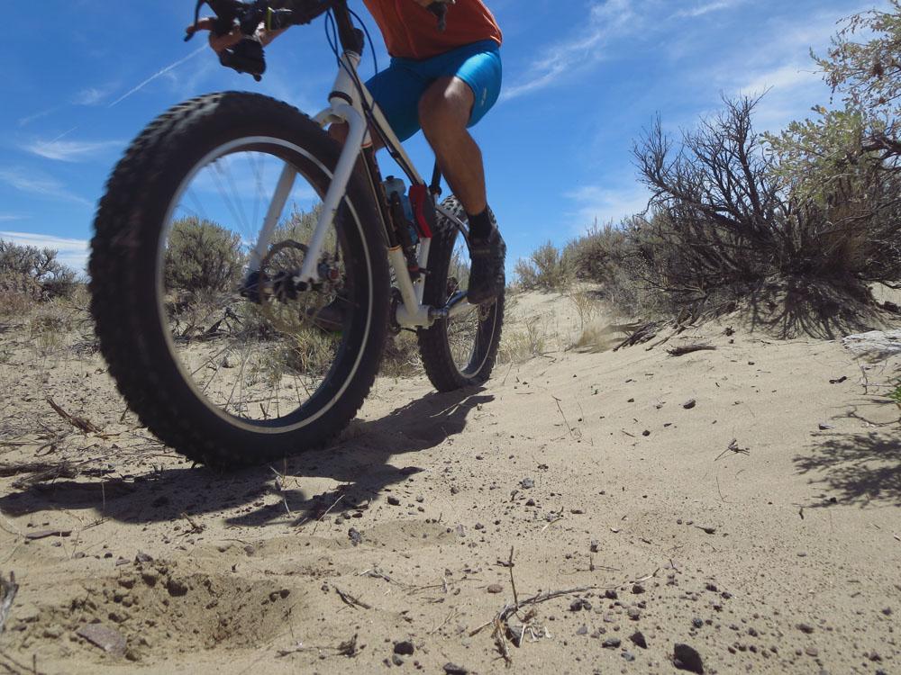 Puffin in the desert sand [O]-mbsand2.jpg