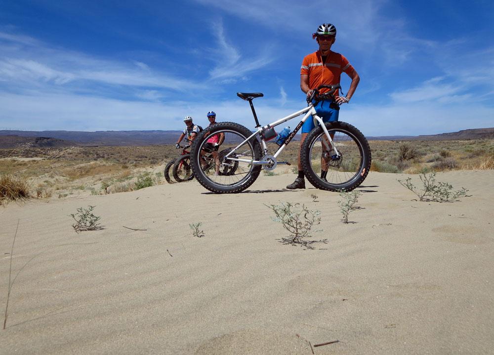 Puffin in the desert sand [O]-mdune.jpg