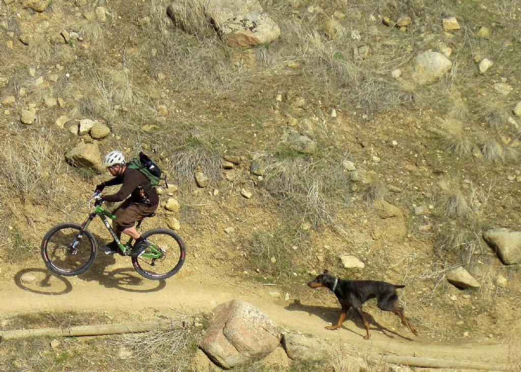 How to train dog to be a good trail companion?-me-thenig.jpg