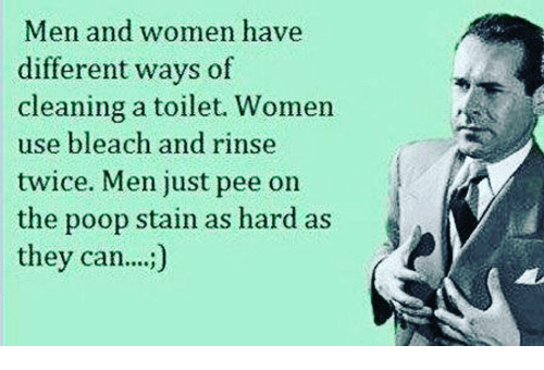 Name:  men-and-women-have-different-ways-of-cleaning-a-toilet-9480234.png