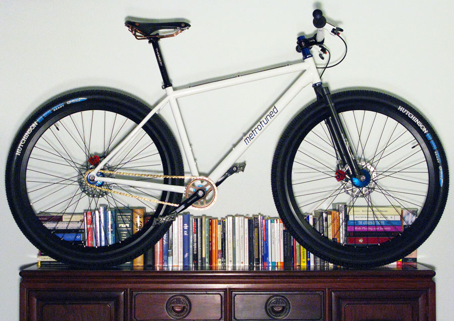 Metrotuned Custom Rigid 29er Singlespeed