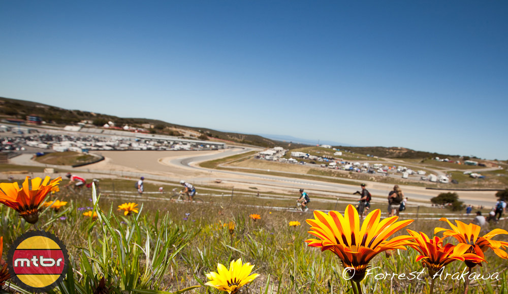 Wild Flowers and Short Track
