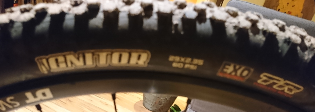 Nobby Nic replacement. Which Maxxis tire?-mi1.jpg