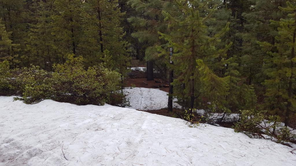 Wanoga trails in 4 weeks?-mid-funner.jpg