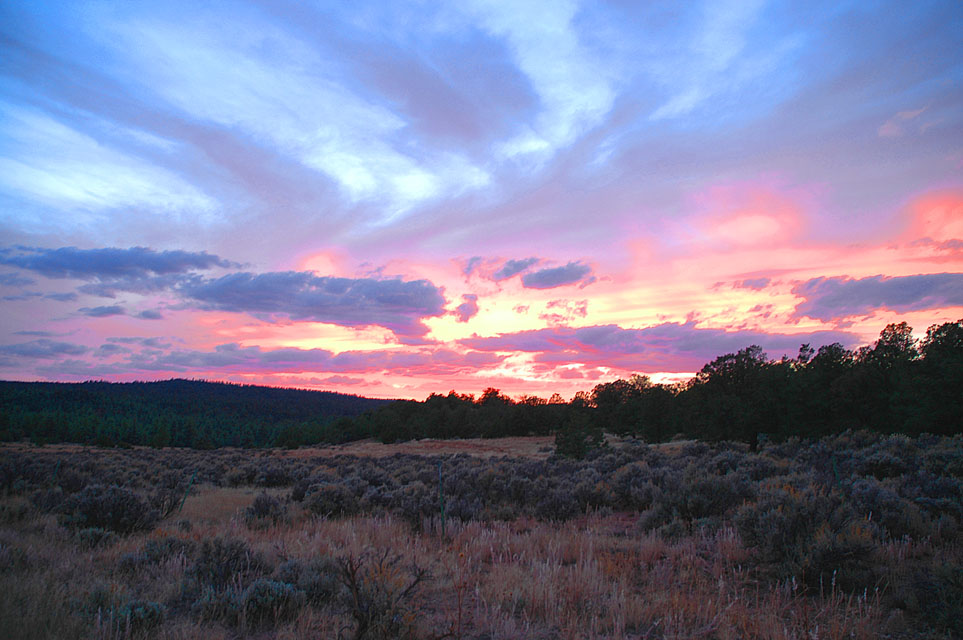 Photo Assignment: Sunset-milkranchmeadow-sunset-copy.jpg
