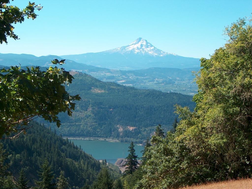 Trail Pics-milleniumview.jpg