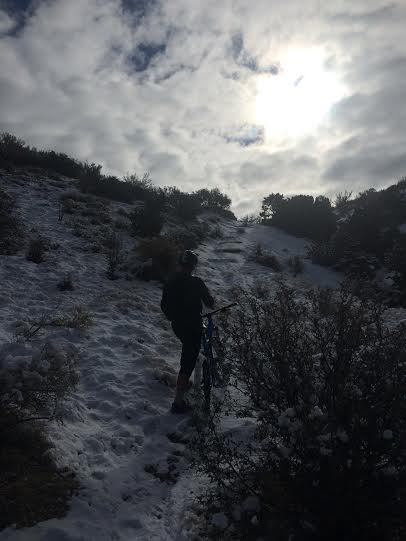winter sunshine riding - recommendations?-miloshsfh.jpg